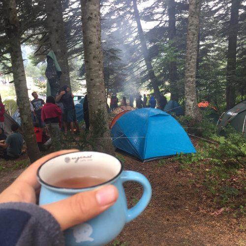Longoz Kampımızın Duyuruları