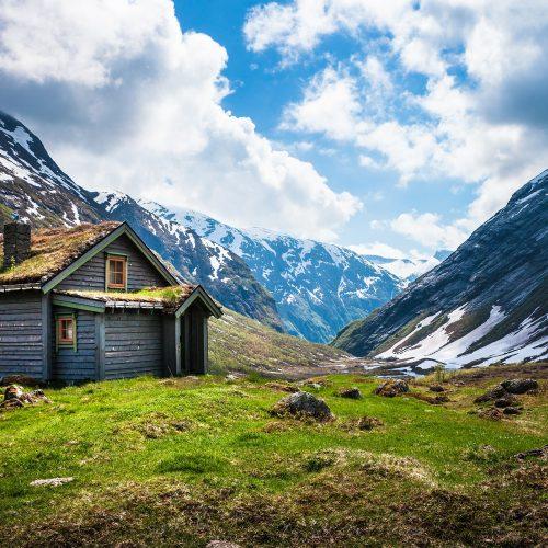Sülalesi Rahat Ülke Norveç